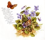 Превью Natures Sketchbook 01 (700x628, 93Kb)