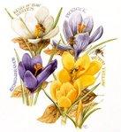 Превью Natures Sketchbook 09 (643x700, 98Kb)