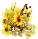 Превью Natures Sketchbook 43 (692x700, 114Kb)