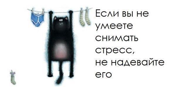536111_327787954011322_1594687624_n (604x300, 18Kb)
