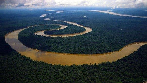 Амазонка (604x340, 36Kb)