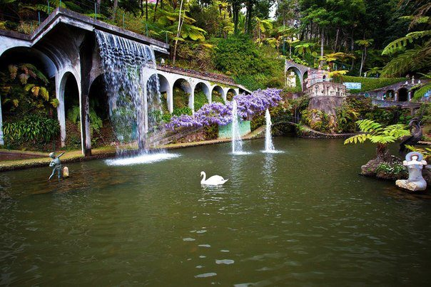 В Тропическом саду Дворца Монте, который расположен на вершине холма Монте с потрясающими видами над заливом Фуншал, Мадейра, Португалия (604x403, 75Kb)