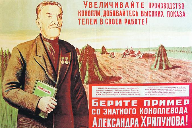 """Боевики приступили к сбору урожая конопли, - пресс-офицер сектора """"М"""" - Цензор.НЕТ 3690"""