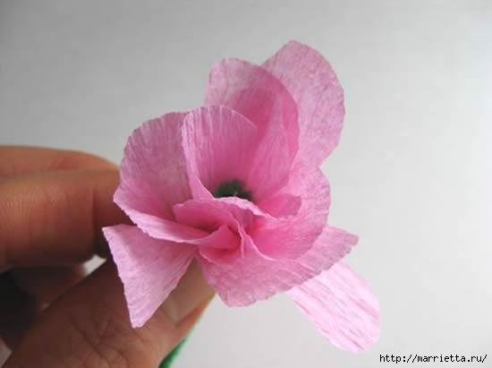 цветы из гофрированной бумаги (12) (550x411, 54Kb)