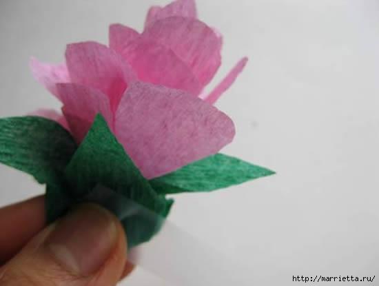 цветы из гофрированной бумаги (16) (550x415, 46Kb)