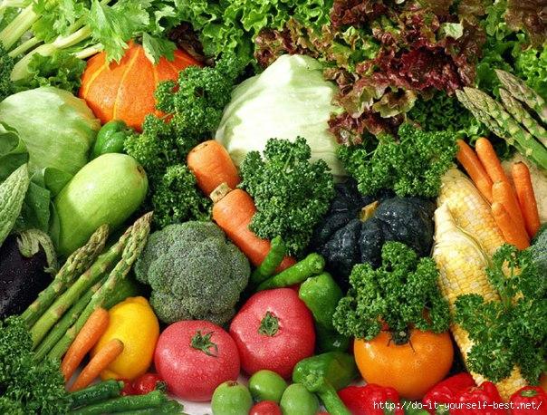 какие продукты нужно употреблять для похудения живота