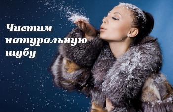 3720816_shyba_chistka3 (350x227, 33Kb)