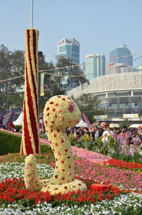 фестиваль цветов в гонгконге 2013 1 (463x700, 265Kb)