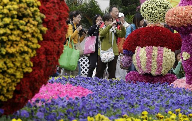 фестиваль цветов в гонгконге 2013 7 (640x405, 279Kb)