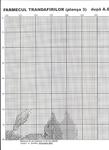 Превью image (4) (508x700, 374Kb)