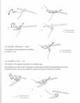 Превью Bijoux au crochet_12 (541x700, 104Kb)