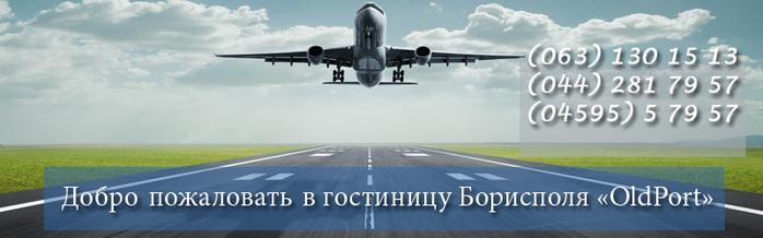 Borispol (700x218, 61Kb)