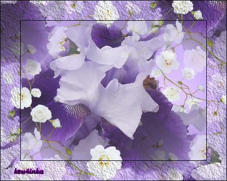 Фиолетовый-ирис (450x359, 349Kb)