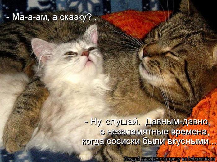 kotomatritsa_Lq (700x522, 79Kb)