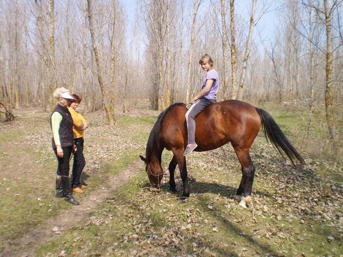 девочка на коне (700x525, 207Kb)