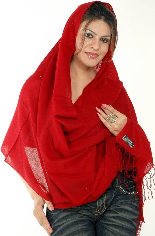 1204651_maroon_pure_pashmina_stole_from_nepal_cv71 (312x475, 35Kb)