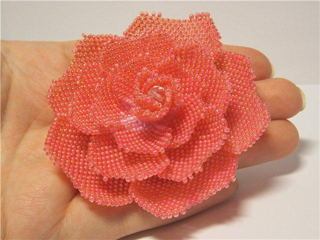 Схема розы или пиона