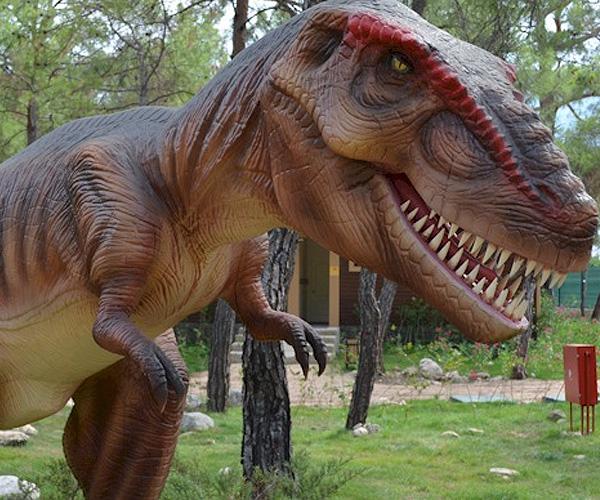 4449415_Dinopark_ (600x500, 182Kb)