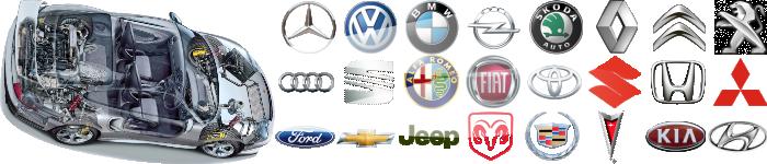 logo (700x150, 175Kb)