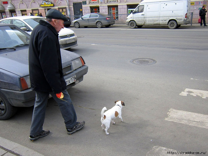 дядя с собачкой 3 (700x525, 235Kb)