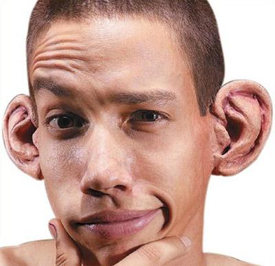 уши (400x387, 46Kb)
