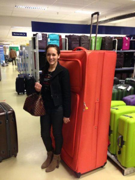 3648511_luggage16 (450x600, 38Kb)