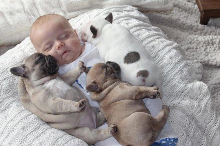 смешные фото детей и собак 1 (700x466, 64Kb)
