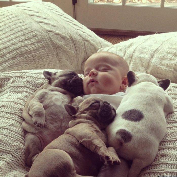 смешные фото детей и собак 3 (699x700, 97Kb)