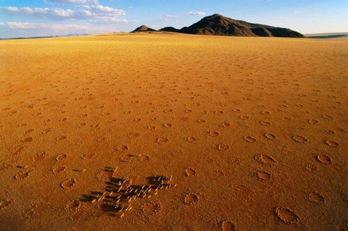 круги в пустыне намиб 2 (700x466, 80Kb)