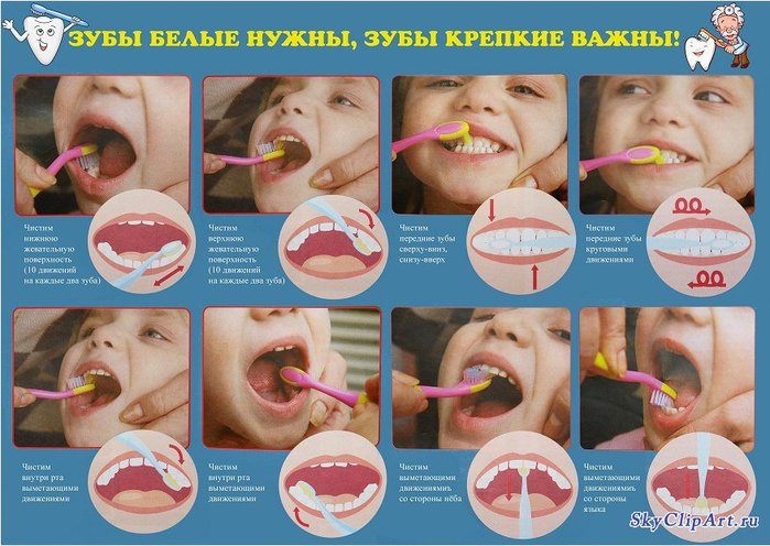 74255221_large_kakpravilnochistitzubydetyam (700x496, 89Kb)