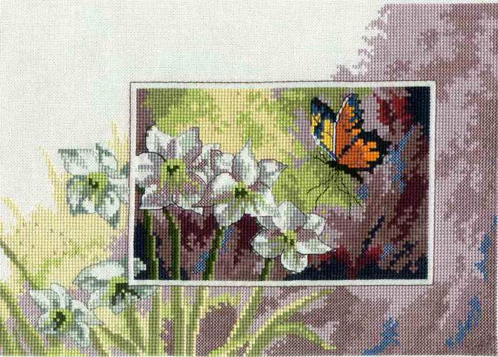 Butterfly & White Flowers 1 (700x501, 74Kb)
