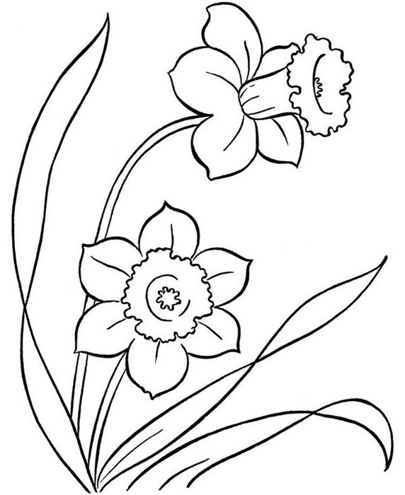 flowers-25 (572x700, 55Kb)