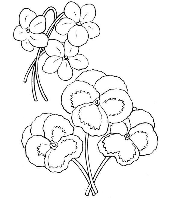 flowers-2 (571x700, 57Kb)