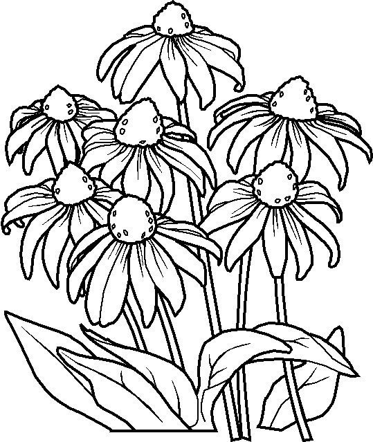 flowers-4 (539x639, 110Kb)