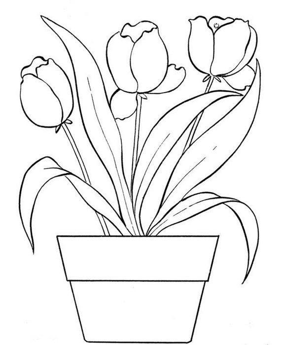 flowers-13 (572x700, 51Kb)