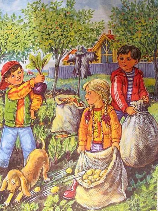 Сбор урожая рисунки для детей