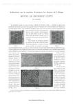 Превью DMC__Motif_de_Broderie_copte,_1890-1-003 (494x700, 153Kb)
