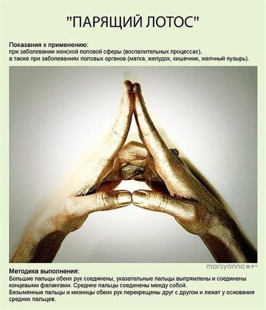 Мудры - йога для пальцев8 (518x604, 64Kb)