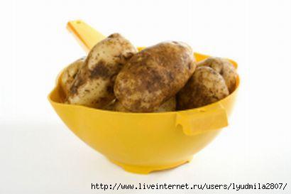 картошка (410x273, 33Kb)