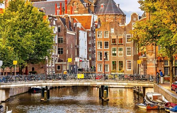 Амстрдам (596x380, 456Kb)