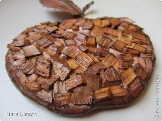 Сувениры - магнитики ЯБЛОЧКИ из картона и прищепок (11) (520x390, 111Kb)