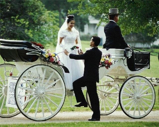 оригинальные свадебные фотографии 7 (640x512, 213Kb)