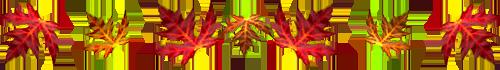 0_4151b_a0ae7aa_XL (500x70, 55Kb)