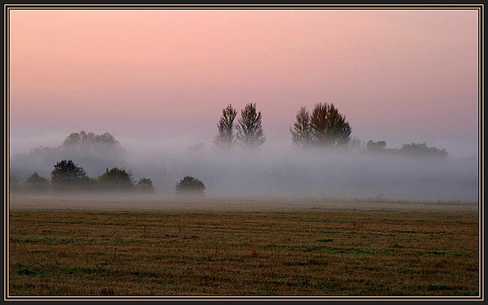 осенний туман 5 (700x437, 294Kb)