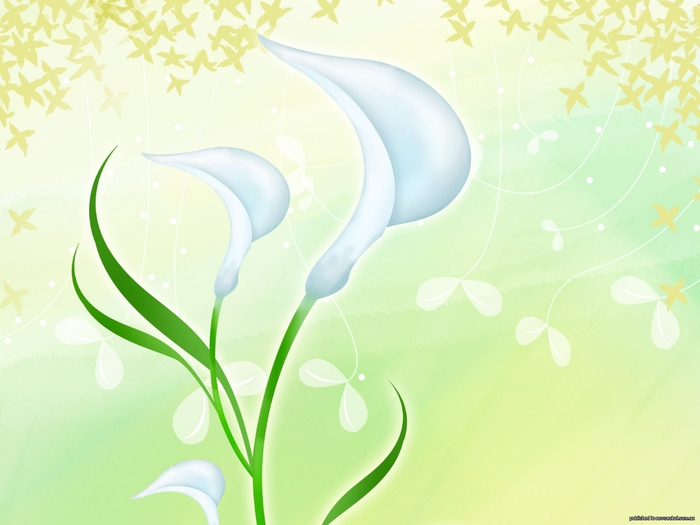 1272455101_design_art_flower_artistic_flower_illustration_15 (700x525, 178Kb)