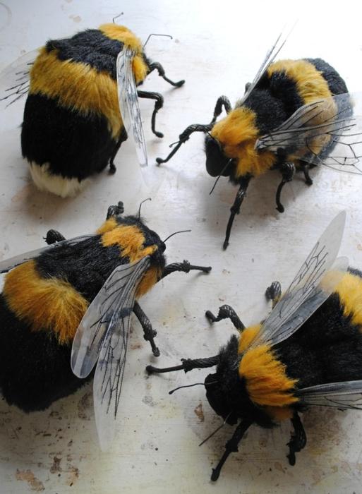 Коллекцию бабочек и моли сшить не хотите А мистер Финч шьет) (2) (513x700, 243Kb)