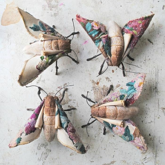 Коллекцию бабочек и моли сшить не хотите А мистер Финч шьет) (5) (700x700, 413Kb)