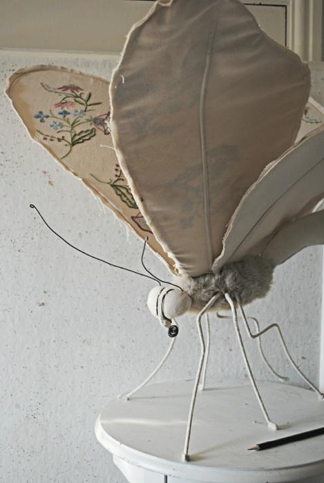 Коллекцию бабочек и моли сшить не хотите А мистер Финч шьет) (19) (469x700, 194Kb)