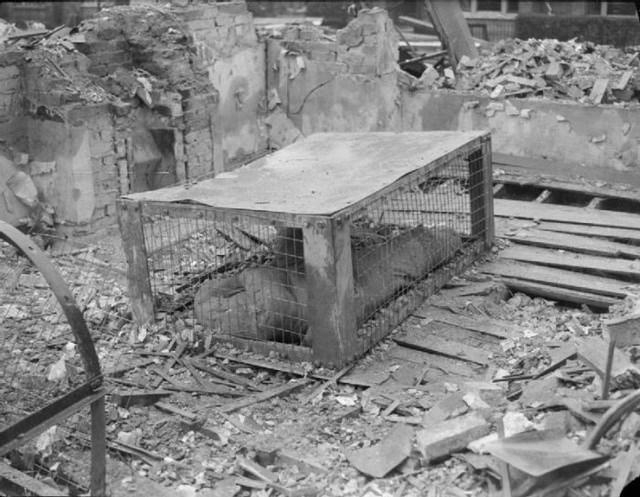 кровати от бомбежек второй мировой фото 5 (640x497, 198Kb)