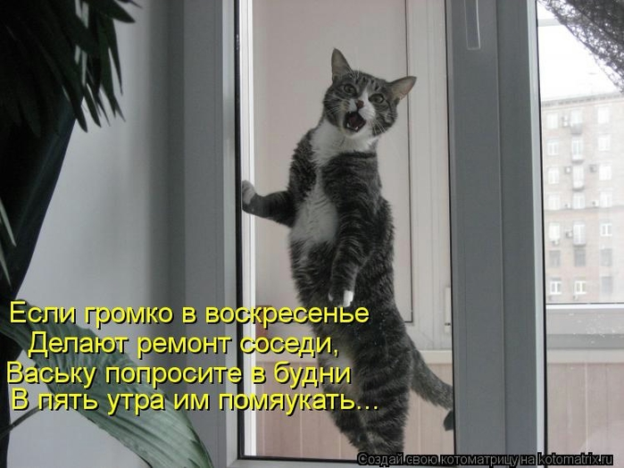 kotomatritsa_DJ (700x524, 212Kb)